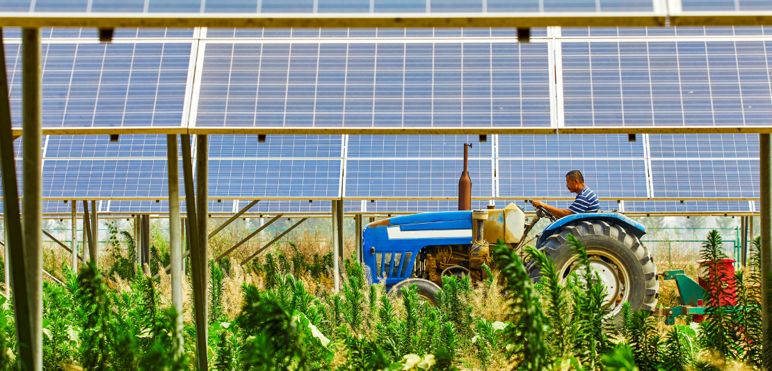 Painéis-Fotovoltaicos-para-a-Agricultura